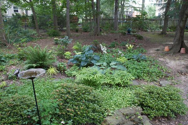 Ken and Sue's Garden 2008