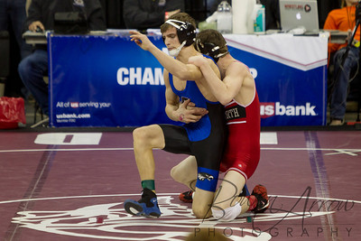Nebraska State Wrestling 2013-0096
