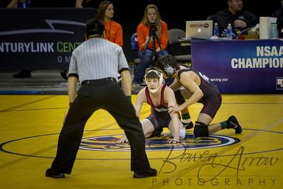 Nebraska State Wrestling 2013-0022