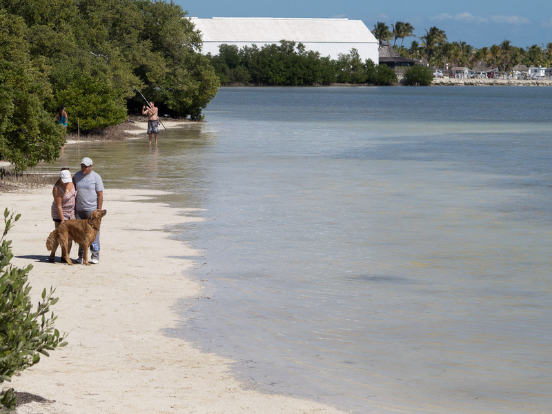 This is a pet friendly beach and apparently good fishing on the flats!