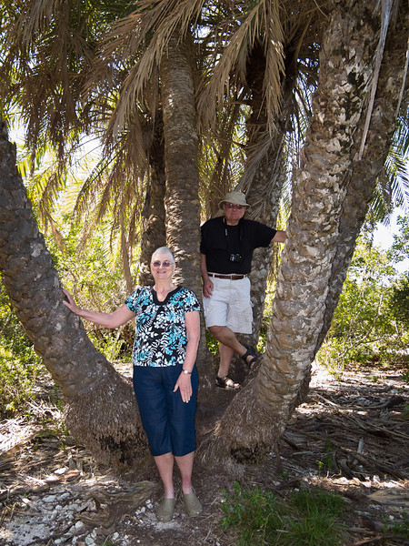 Jean and Bill stand in a Palm cluster