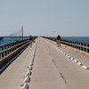 Walk the Walk on 7 Mile Bridge.