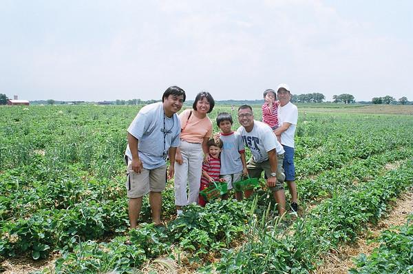 Kids 1st Strawberry Picking, Wisconsin