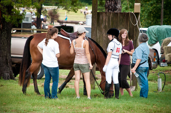 Marcie At Pinehill Horse Show