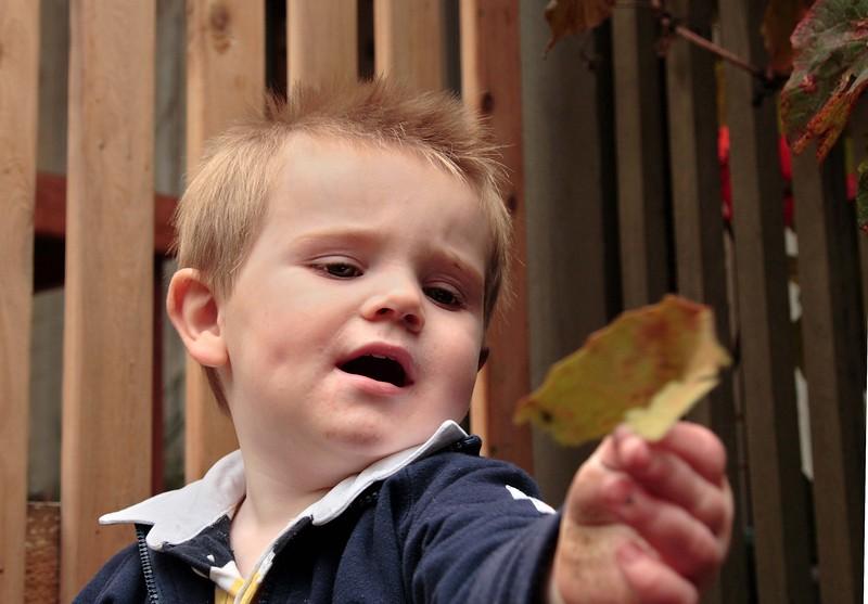 One year old Byron?