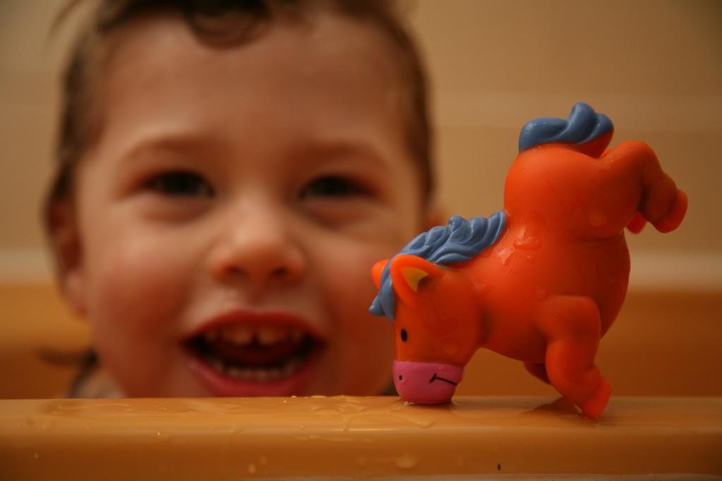 Herbie & the Horse