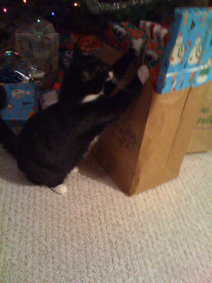 Minnie wanted to know what she was getting for Christmas.
