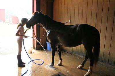 Kimberly's Horseback Riding