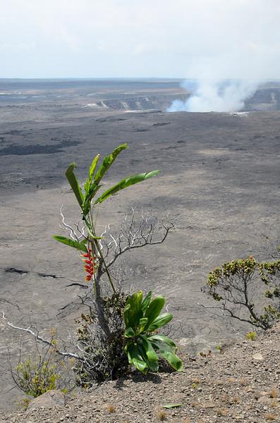 20120822-Kona-trip-volcano-7841