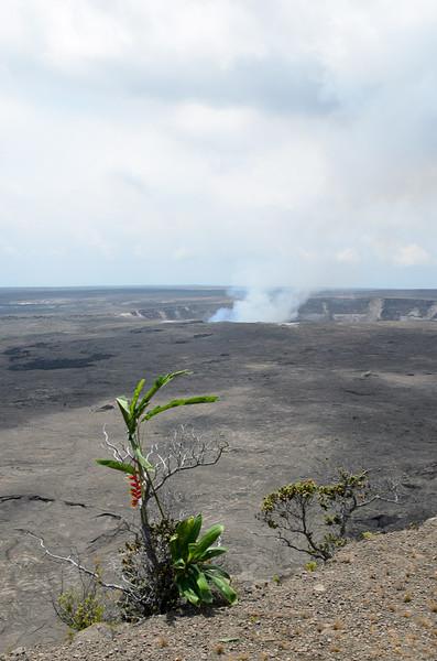 20120822-Kona-trip-volcano-7842
