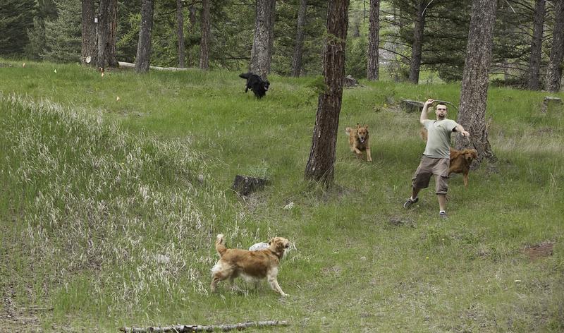 Herron Park in Montana