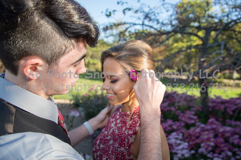 Homecoming (186 of 243)