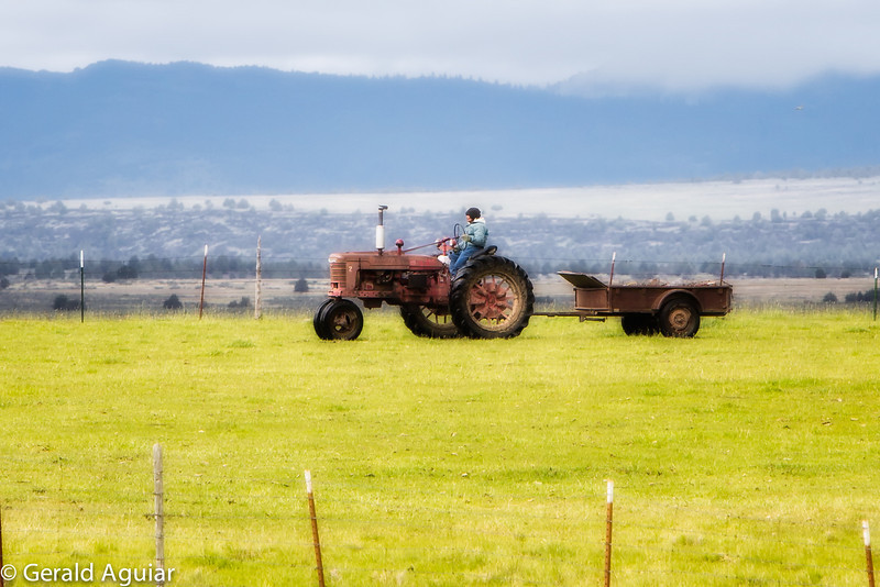 I really like old tractors.  We used to have a Model B John Deere tractor (similiar to this Farm-All tractor) on Aguiar Ranch that I drove when I was growing up.  I really like the trailer also!