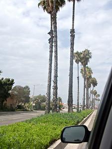 20090822 133948 LOS ANGELES MATT SAM BOB ANGELA IMG_2758_1