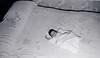 Renée, 3 weeks old, March 1959.