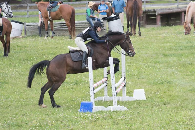 DRHC Jumper Derby 5-21-2017-1123