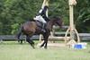 DRHC Jumper Derby 5-21-2017-1267