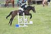 DRHC Jumper Derby 5-21-2017-1124