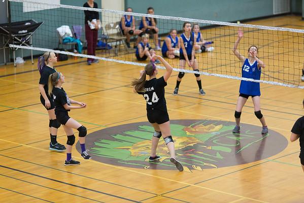 LT Volleyball