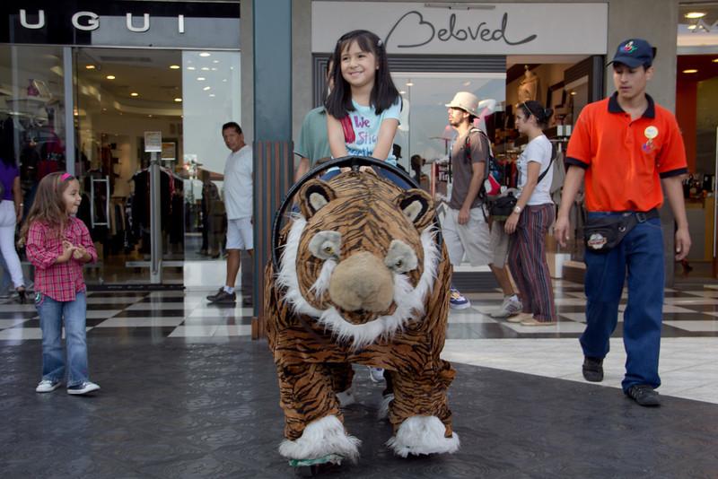 Paseando en el tigre