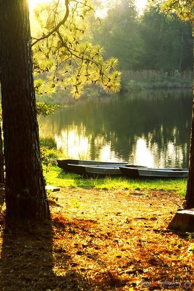 Lakeview (November 2003)