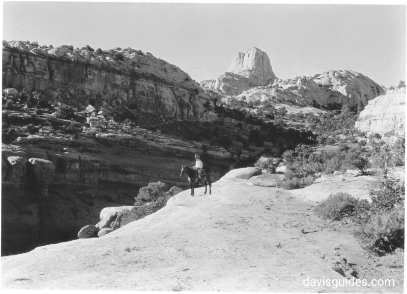 Horseman on rim of the canyon, west of the Fremont River Gorge. Capitol Reef National Park, 1935