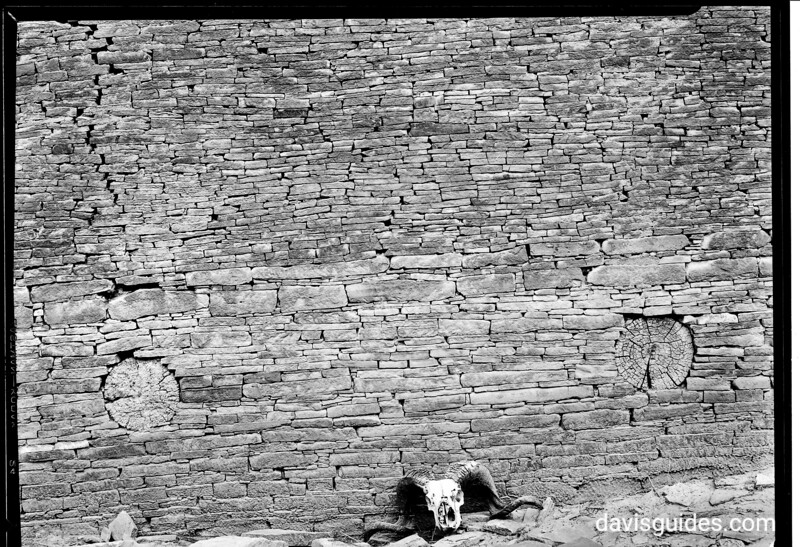 Skeleton head beside rock wall, Chaco Canyon National Monument (now Chaco Culture National Historical Park), 1929.