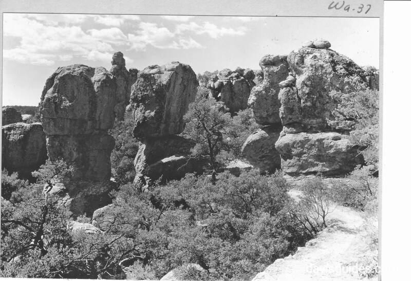 Columns of rhyolite in Wonderland of Rocks, Chiricahua National Monument, 1935.