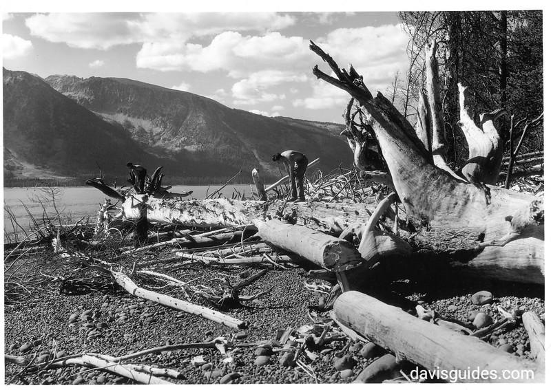 CCC men clearing logs from shore of Jackson Lake. Grand Teton National Park, 1933.