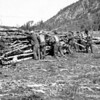 ccc men clearing debris from the shores of Jackson Lake. Grand Teton National Park, 1933.