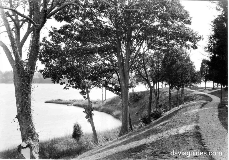 View down Pope's Creek bank toward the point below Memorial House. George Washington Birthplace National Monument, 1931.