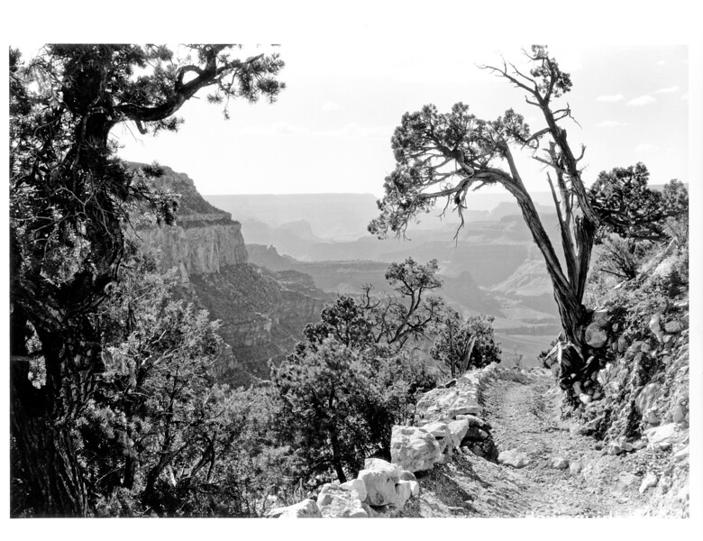 Bright Angel Trail, Grand Canyon National Park, 1930.