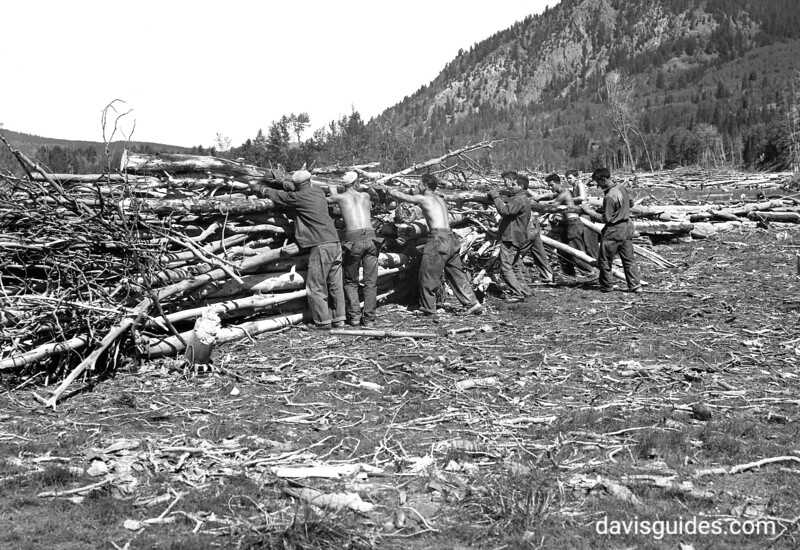 CCC enrollees clearing debris from the shores of Jackson Lake, Grand Teton National Park, 1933.