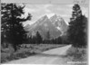 Road near Crandall's park studio, showing Mount Michaud, Teewinot, the Grand Teton, and Mount Owen. Grand Teton National Park, 1930.