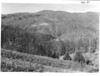 The ridge west of Mount Sterling from Cove Creek Gap. Planned Great Smoky Mountains National Park, 1931.