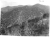 The forest from Newfound Gap Highway; Mount LeConte in the distance. Part of the Transmountain Highway at right.