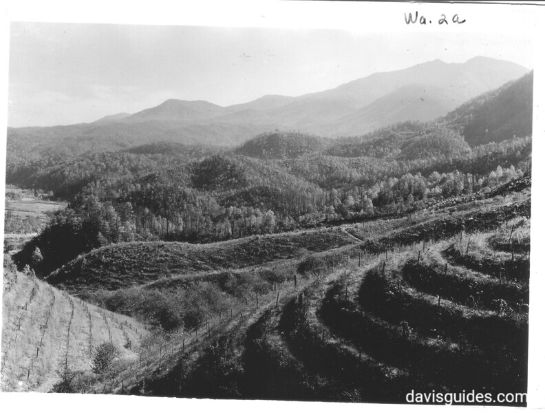 View of Fightin' Creek Valley and Mount LeConte from summit between Elkmont and Gatlinburg. The view is said to the greatest difference in elevation in the eastern United States between 2 places in horizontal distance. Planned Great Smoky Mountains National Park, 1931.