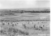 View of Custer's Last Stand in foreground, taken from the monument. National Cemetery and headquarters in the distance. Little Bighorn Battlefield National Monument, 1947.