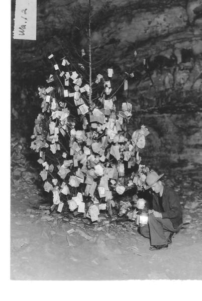 """The """"Christmas Tree"""", a cedar tree stuck in the floor of old Mammoth Cave, on which tourists hang their personal visiting cards. Mammoth Cave National Park, 1935."""