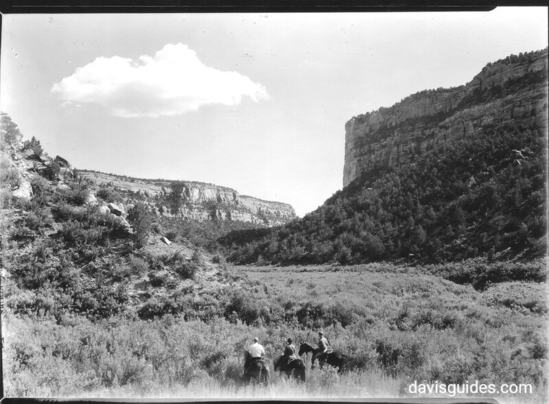 View down Navajo Canyon from bottom. Echo Cliff on the right. Mesa Verde National Park, 1929.