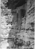 Ladders leading to dwellings in the main ruins. Montezuma Castle National Monument, 1929.