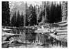 Fairy Pool at Paradise Valley, Mount Rainier National Park, 1932.