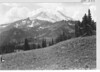 High meadow above Tipsoo Lake, looking up to Rainier. Wildflowers in foreground. Mount Rainier National Park, 1932.