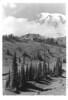 Mount Rainier, Paradise Valley and Paradise Inn. Mount Rainier National Park, 1937.