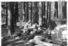 Breakfast at Ohanapecosh Springs Campground, Mount Rainier National Park, 1941.
