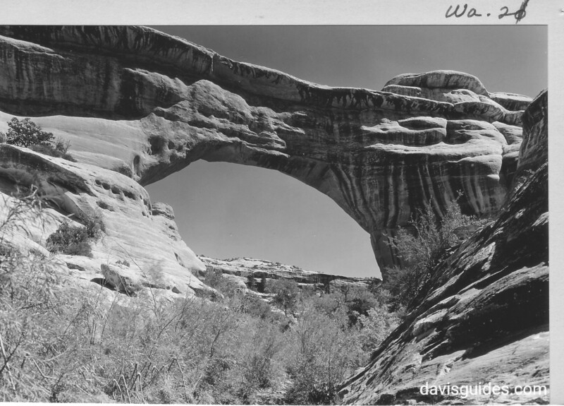 Augusta, or Sipapu, Bridge in White Canyon, from below. Natural Bridges National Monument, 1935.