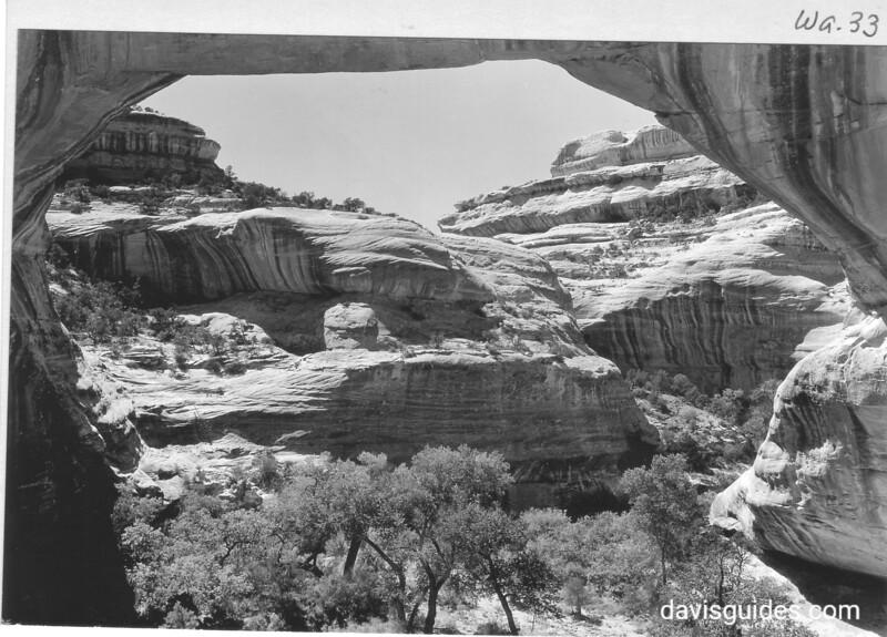 Augusta, or Sipapu, Bridge in White Canyon. Natural Bridges National Monument, 1935.