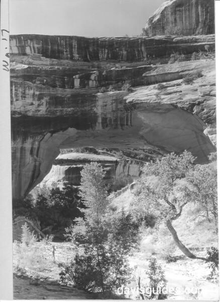 The Caroline Bridge over White Canyon. Natural Bridges National Monument, 1935.