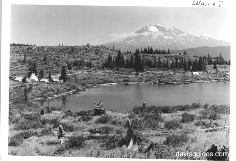 Mount Adams from southwest Indian encampment occupied by Yakima Indians harvesting huckleberries. Future North Cascades National Park, 1937.