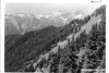 Mount Tom and Mount Olympus from Skyline Trail on High Divide between Queets and Nortk Fork of Quinault River. View across the valley of Queets. Proposed Olympic National Park, 1934.